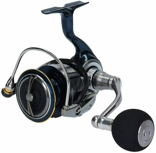 DAIWA Spinning Reel 19 CELTATE LT 12 types【New】J0640 From Japan!