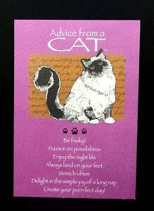 Image Is Loading Happy Birthday Greeting Card Advice From A Cat