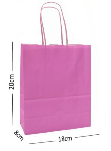 40 Party Bag Paper Carrier Gift Bags Birthday Loot Bags