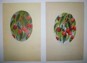 Eugene-CORNEAU-Les-CERISES-AQUARELLE-originale-SIGNEE-Petites-Inventions