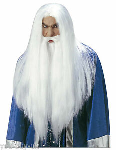 Wizard-Wig-with-Beard-and-Mustache-like-Gandalf-Lord-of-the-Rings-Hobbit