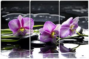 Quadro quadri moderno arredo casa salotto soggiorno pz orchidea