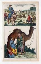 Mongolen-Ethnologie-Trachten-Asien - Kupferstich 1800 G. T. Wilhelm Dromedar