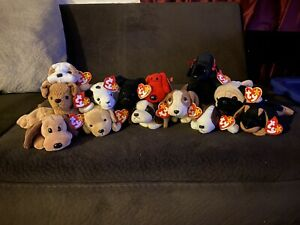 Beanie Baby Puppy Collection: Scottie, Pugsly, & Rover + 10. Original owner
