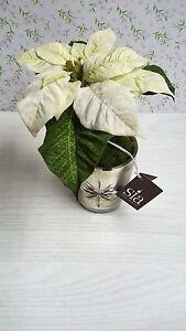 Stella Di Natale Bianca.Dettagli Su Sia Pianta Finta Stella Di Natale Bianca Con Vaso In Vetro 50103