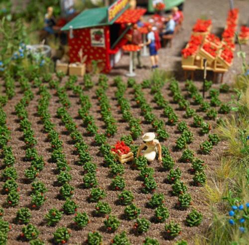 FIELD BNIB OO HO BUSCH 1265 40 STRAWBERRY PLANTS KIT
