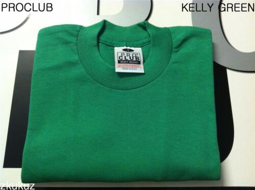 2 NEW PROCLUB HEAVY WEIGHT T-SHIRT KELLY GREEN PLAIN PRO CLUB BLANK S-5XLT 2PC