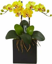 Nearly Natural 4570 Triple Phalaenopsis Orchid in Glass Vase