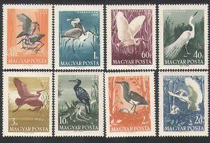 UNGHERIA-1959-VOLATILI-acquatici-Waterfowl-GLI-AIRONI-Egret-IBIS-NATURA-animali-selvatici-8v-n35343