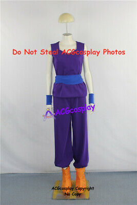 Dragon Ball Z Son Gohan Costume