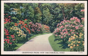 NEW-MATAMORAS-OH-OHIO-Vintage-Greeting-Postcard-Garden-Flowers-Park-Old-PC