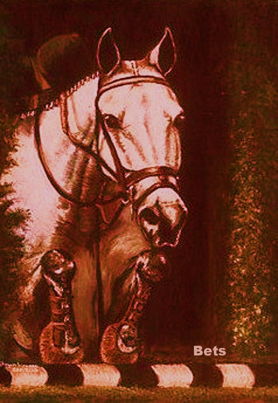 HORSE PRINT Giclee JUMPER Art NO FAULTS artist BETS  3 COLORS print size 14 X 19