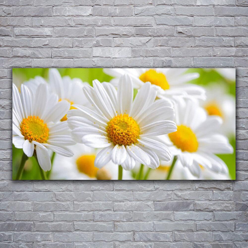 Photo sur toile Tableau Image Impression 120x60 Floral Marguerite
