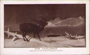uny-Postcard-The-Challenge