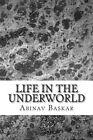 Life in the Underworld: Death Is Only the Beginning... by Abinav Krishna Baskar (Paperback / softback, 2013)