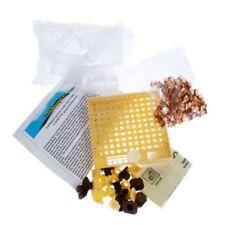 Beekeeping Original Nicot Cupkit Queen Rearing System
