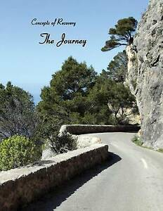 Concepts-of-Recovery-The-Journey-Brand-New-Free-P-amp-P-in-the-UK