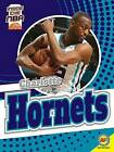 Charlotte Hornets by Sam Moussavi (Hardback, 2016)