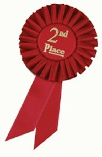 3x6 Rosette Ribbons 2nd Place