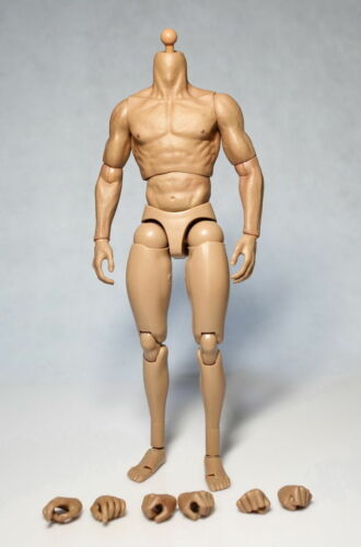 "US 1//6 man Male Muscular Action Figures Body For 12/"" Male Head Sculpt ZC Toys"