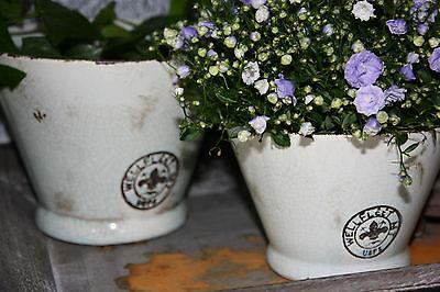 * Pflanztopf Blumen Topf Keramik Rund Grün Hellgrün Lilie Shabby Landhaus