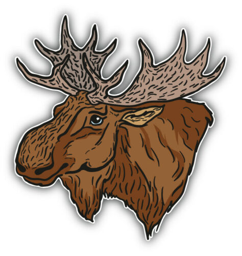 "Moose Head Sketch Car Bumper Sticker Decal  /""SIZES/"""