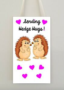 Hedgehog hug Coaster Gift Sending Hedge Hugs Present positive quote