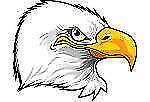 EagleStore16