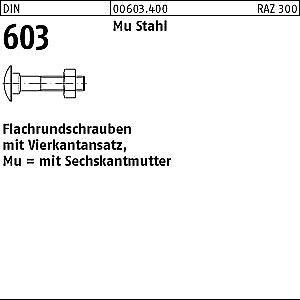 100 Schloßschrauben Mère DIN 603 m10x40