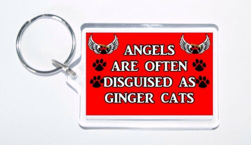 Novelty Cat Keyring Ideal Gift Angels Are Often Disguised As Ginger Cats