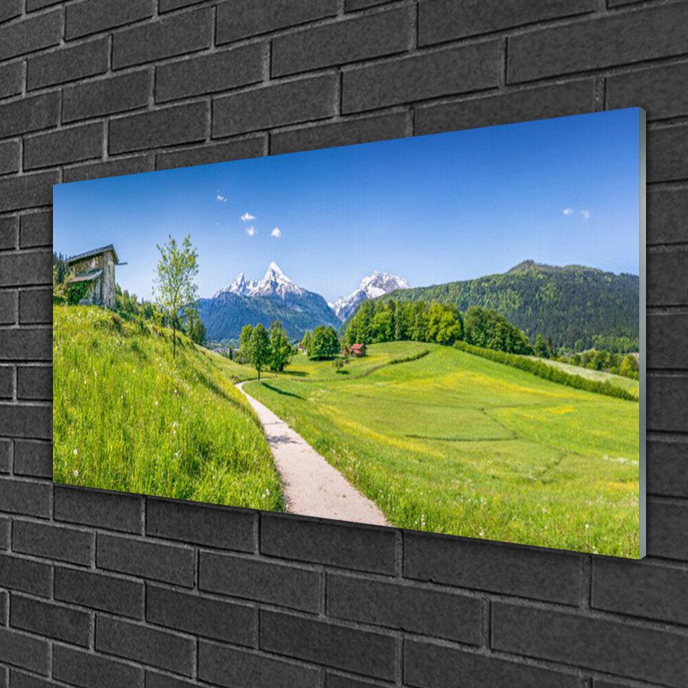 Image sur verre Tableau Impression 100x50 Nature Sentier Prairie