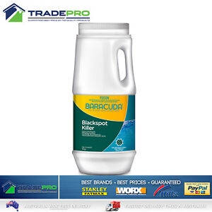 Pool-Blackspot-Algaecide-Remover-1Kg-Baracuda-Concentrated-Granular-Algae-Killer