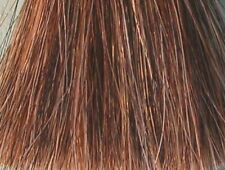 """New Palomino Genuine Horse Hair Tail Extension 1 Lb 34-36/"""" AQHA Y1 with FREE BAG"""