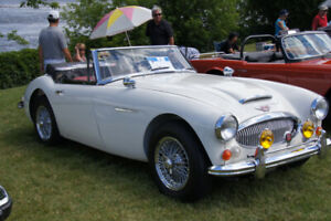 Austin Healey 3000 Mark III BJ8 1966