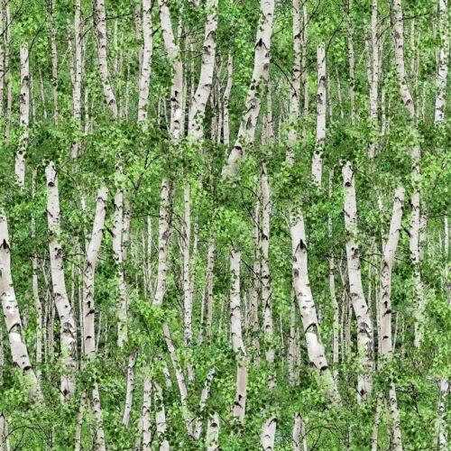 Birch Tree Forest Landscape Medley 566-Green Elizabeth Fabric-$14.95//yard