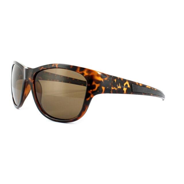 Polaroid Sunglasses 3015//S V08 IG Havana Brown Polarized
