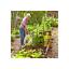 Indexbild 4 - Floragard Bio Komposterde 1x50L Hochwertig Grünkompost Kompost NEU
