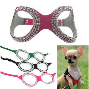 Details about Small Teacup Dog Harness Soft Vest Chihuahua Harness Collar  XXXS/XXS/XS/S