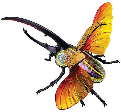 HERCULES BEETLE ANATOMY MODEL/PUZZLE, 4D Vision Kit # 26108  TEDCO SCIENCE TOYS