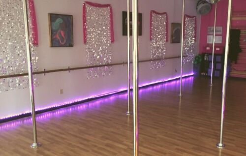 Stainless *PICKUP ONLY* Permanent Mount Dance Poles 50mm Platinum Stages