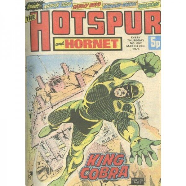 Fumetti classici Vintage Hobber e Hornet King Cobra grande stagno A3 Vintage Vin