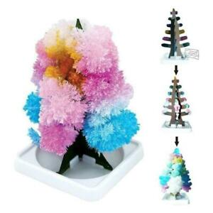 Kids-Magic-Growing-Crystal-Tree-Kit-Christmas-Paper-Science-Toy-Fast-Decors-F7J8