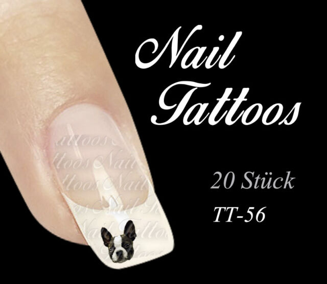 Nail Art Tattoo Boston Bull Terrier Bulldoge Tiere Hund TT-56