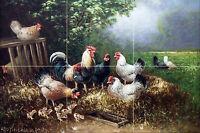 Chicken Family Farm Rooster Tile Mural Bathroom Wall Backsplash Marble Ceramic