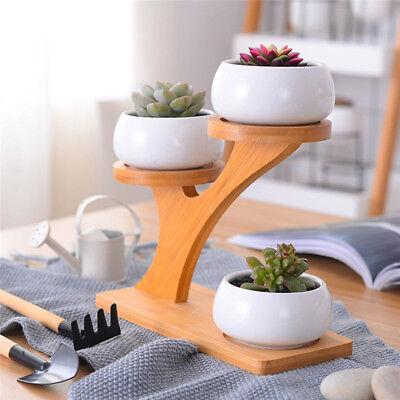 3 Ceramic Succulent Plant Flower Pots with Bamboo Stand Garden Porcelain Planter
