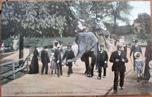 Elephant In Paris France Zoo 1910 Postcard Jardin Zoologique D