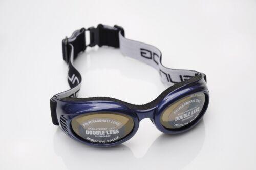 Sundog 84002 Dog House Double Lens Goggles Blue//Gold