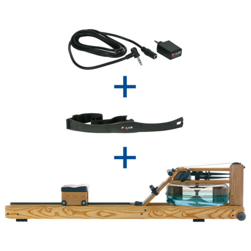 WaterRower rudergerät fresno frecuencia cardíaca destinatarios y brustgu s4 monitor incl
