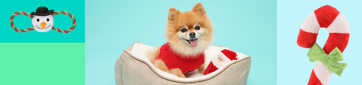 Shop Event Pet-Friendly Presents Toys and more for cats and dogs.