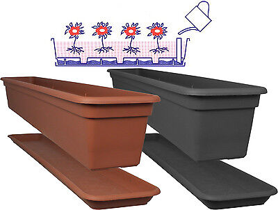 Blumenkästen mit bewässerung